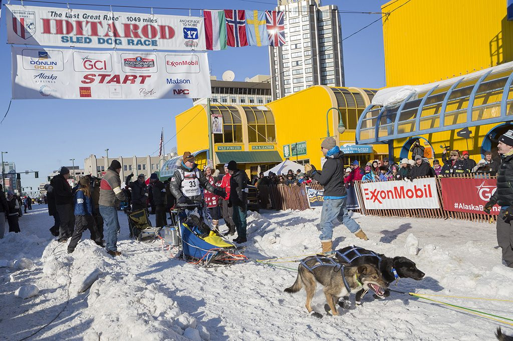 Musher Mats Pettersson at the ceremonial start of the 2017 Iditarod Race, Anchorage